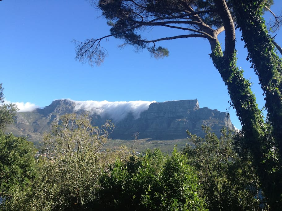 Wonderful view of Table Mountain from the balcony