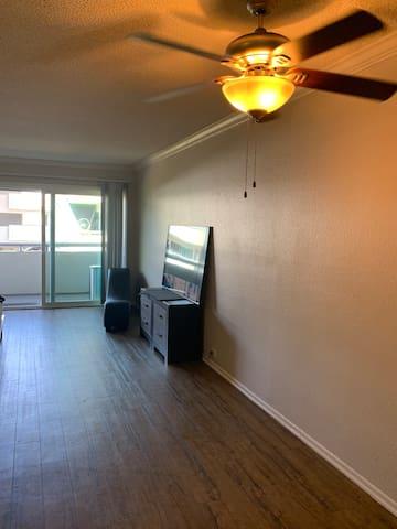 Beautiful one bedroom apartment in Newport Beach