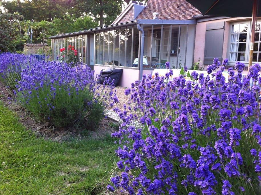 La terrasse et la véranda