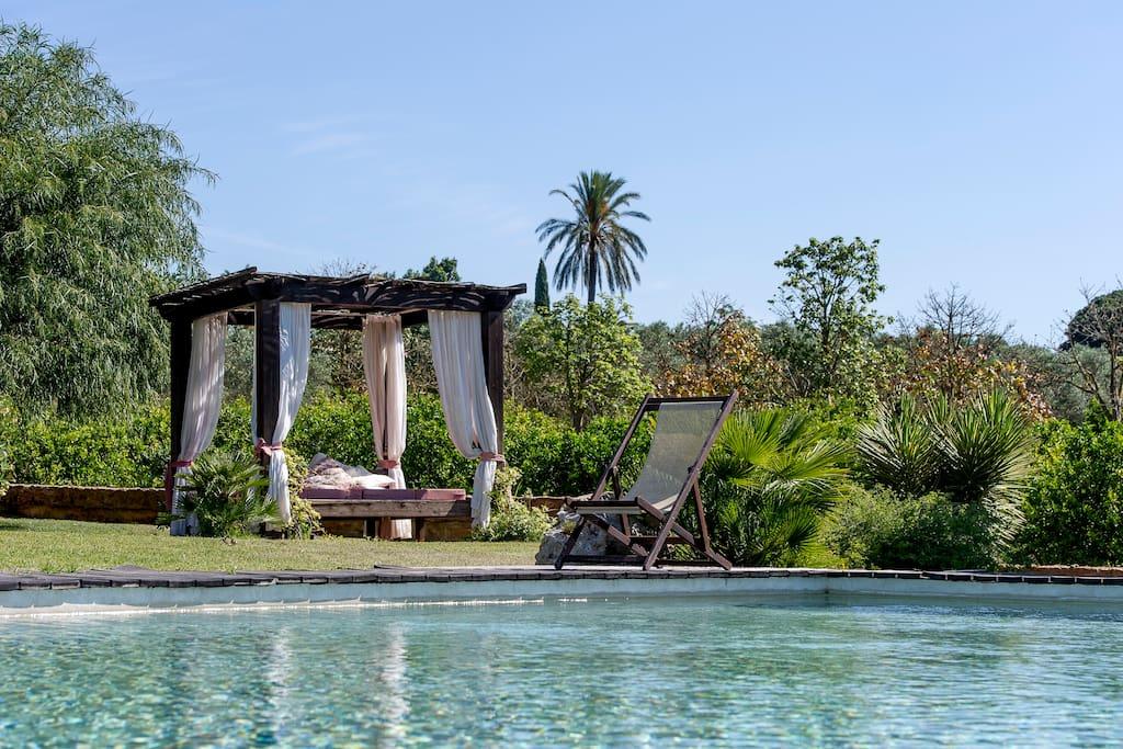 Villa di lusso con piscina sicilia villas for rent in - Villa con piscina sicilia ...