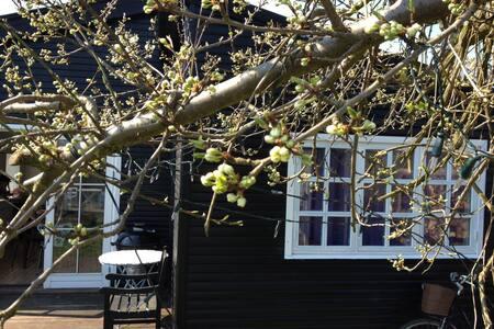 Charming artist home - Copenhague - Cabaña