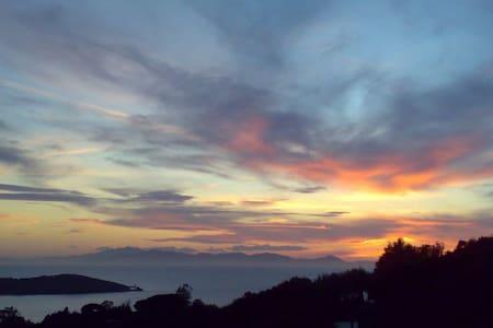 residencepuntala panorama B1 - Punta Ala