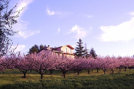 Podere Costantino - Flats in a Villa - Near Pisa - Terricciola - Lakás