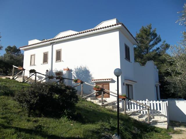 Appartamentino in villa a Vieste - Vieste - Villa