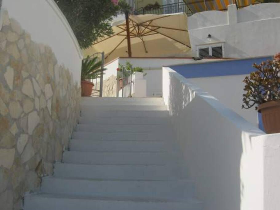 Bianco immacolato, verde scintillante, sfumature di marroni, giallo e celeste... gli ultimi scalini prima di varcare il cancello di casa.
