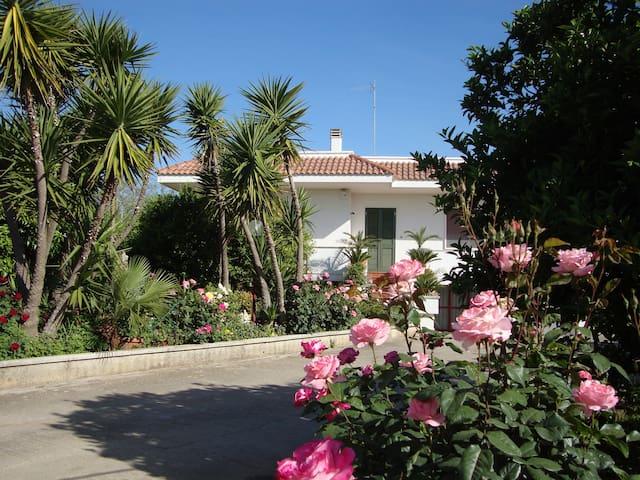 Vacanze Salento vicino ad Otranto - Muro Leccese