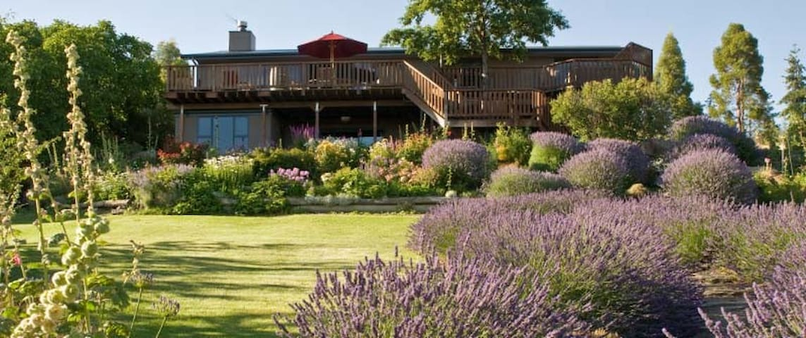 GrapeView Bed and Breakfast - Bannockburn - Penzion (B&B)