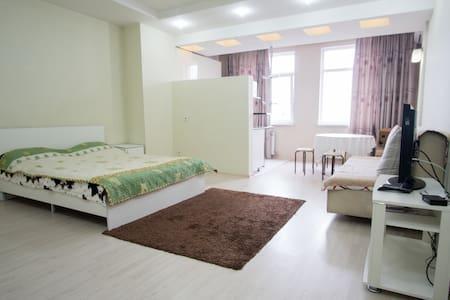 Квартира-студия в центре Бишкека