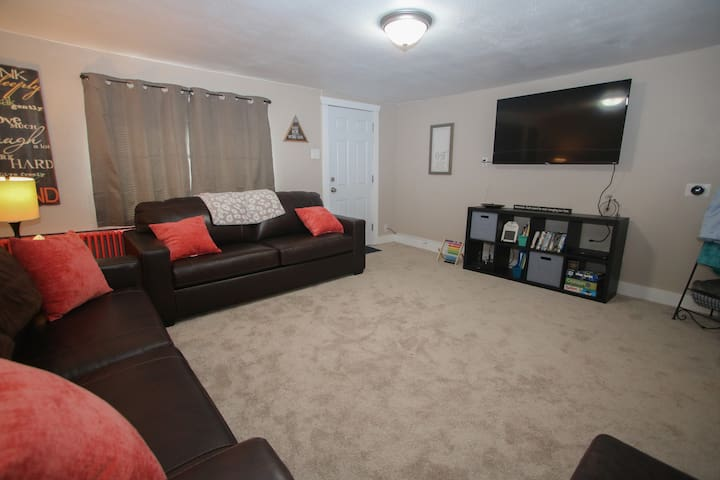 Living room with TV, Blu-ray and Netflix