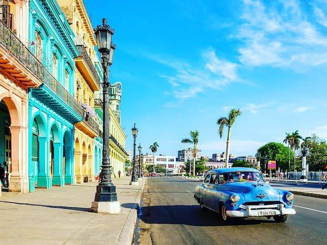 Bed and Breakfast! in Havana