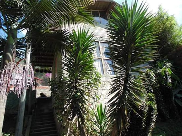 •||Naturaleza en Santa Elena||• - Medellin