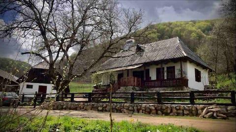 Παραδοσιακή κατοικία στο Maramures, Tara Lapusului