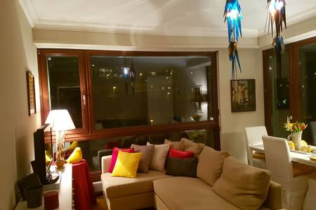 Splendido e centralissimo appartamento - Lugano