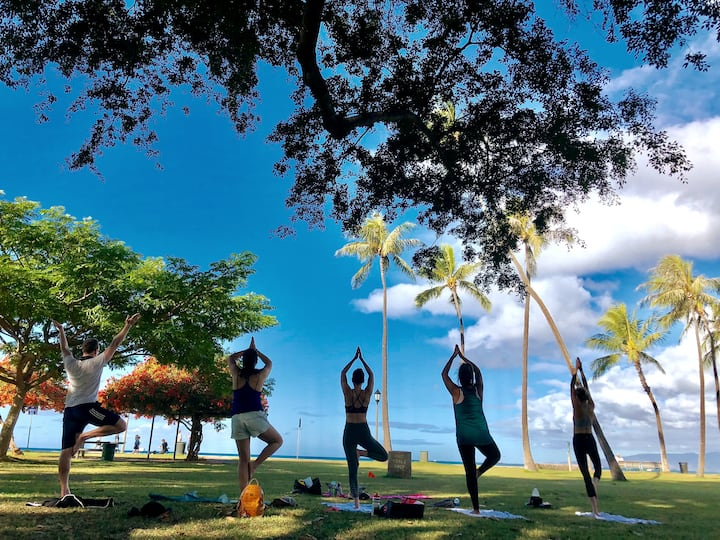 morning beach yoga under trees shade
