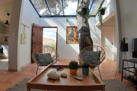 Beach Tree House in Porto Santo Island