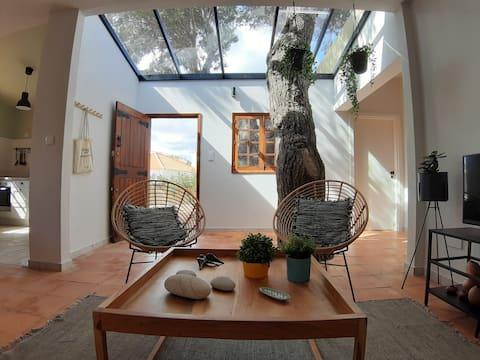 Beach Tree House in Porto Santo Island