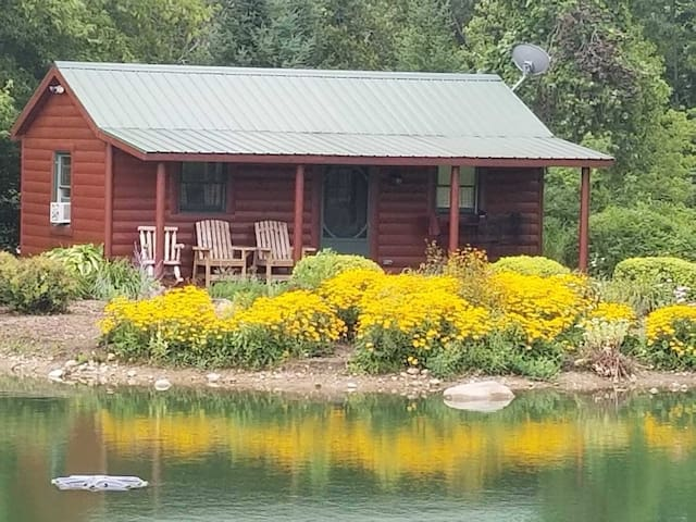 The Cabin on the pond