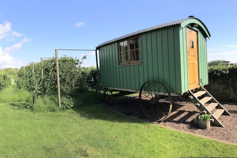 The Shepherds Hut at Eggshell