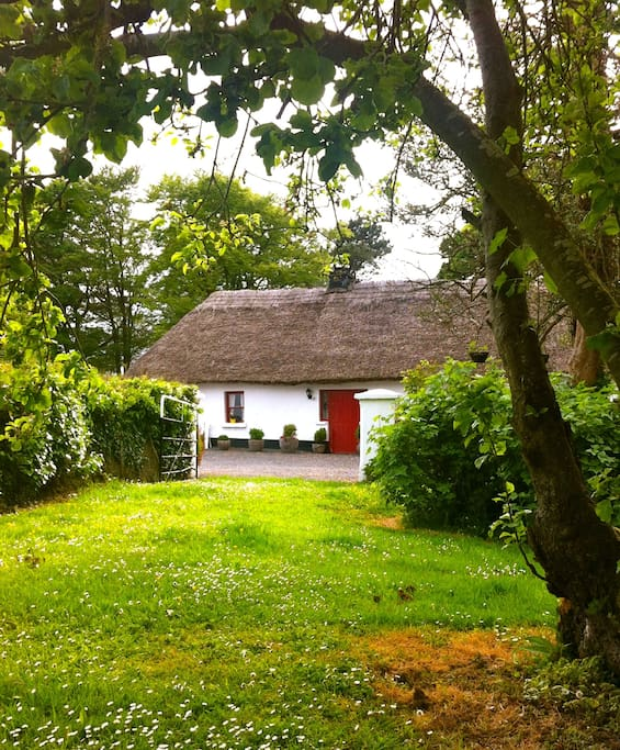 Purtill Cottage.  View from Orchard to cottage.