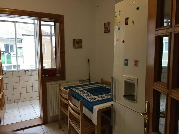 Cosy apartment in Timisoara