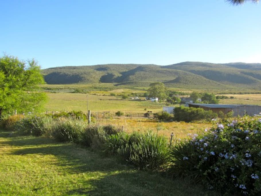 View from Guesthouse lawn