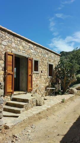Jolie petite maison en pierre au calme - Monticello - Haus