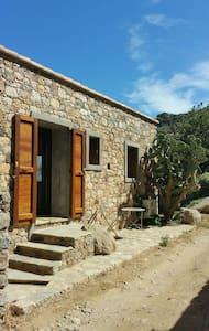 Jolie petite maison en pierre au calme - Monticello - Huis