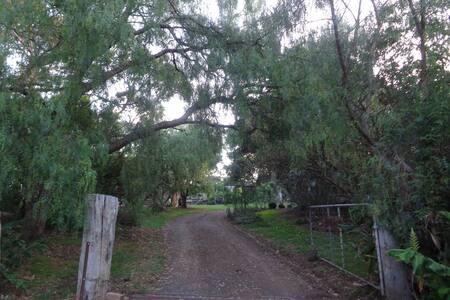 Yileen cabin farm stay - Cowes - Bungalow