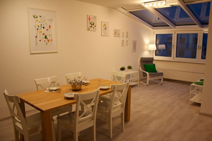 Spacious apartment in Vienna - Wenen - Appartement