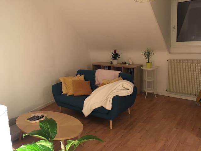 Chambre mansardée dans un appartement calme