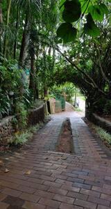 Munnar Tea Garden. Cool climate