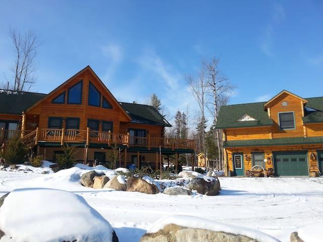 Rustic Adirondack Cabin Apartment - Jay - Apartment