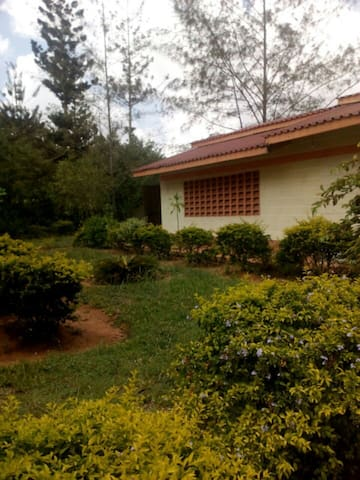 Little House Kwale - Kwale - House
