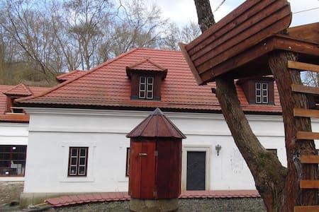 14 cent. Water mill & gemstone workshop by Prague