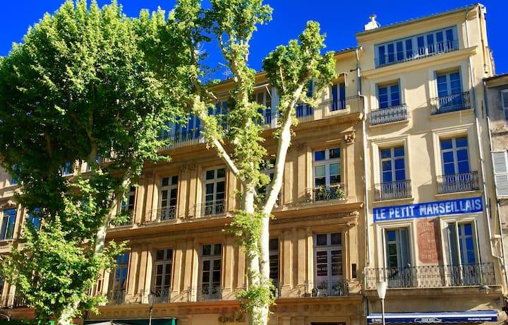 Les Suites du Cours / La Petite Suite balcon & SPA