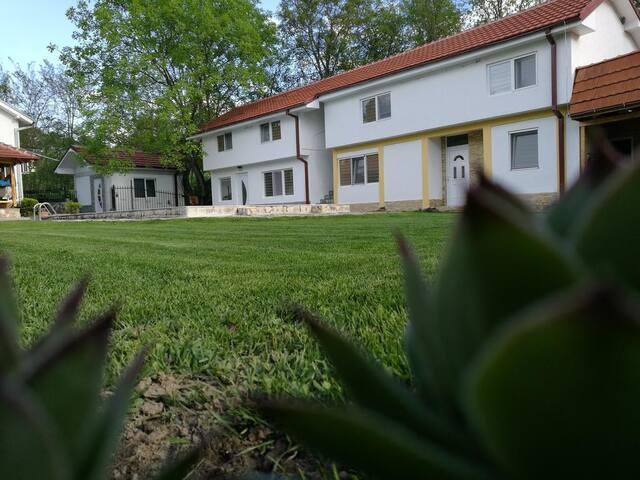 Villa Ruma Dabnishte 1bdr House