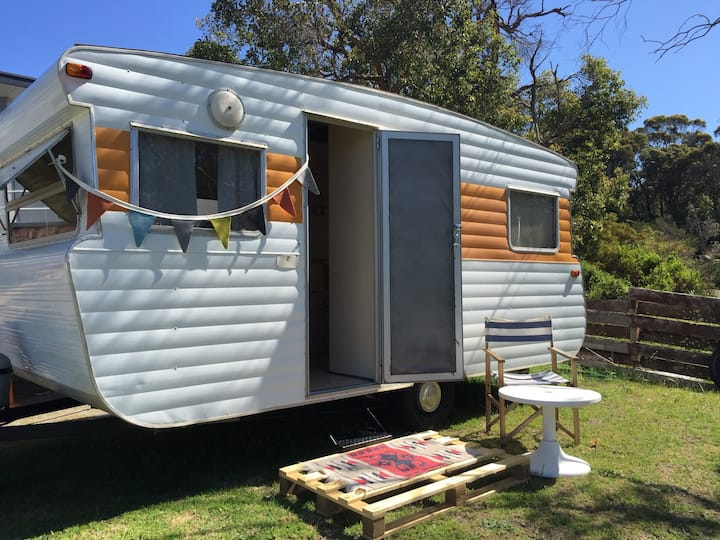Vintage caravan in the heart of Albany