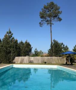 Maison avec piscine au coeur de la forêt