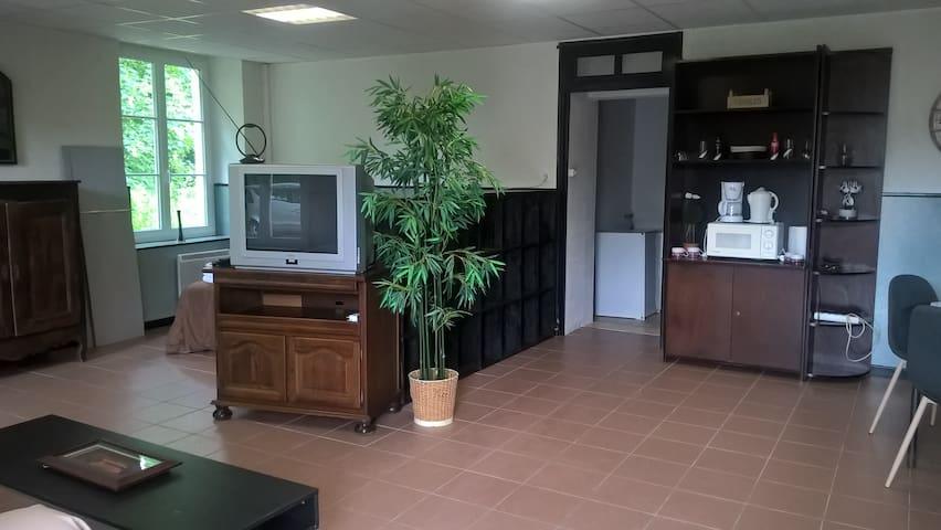 Studio au calme de la campagne - Brains-sur-Gée - Apartment