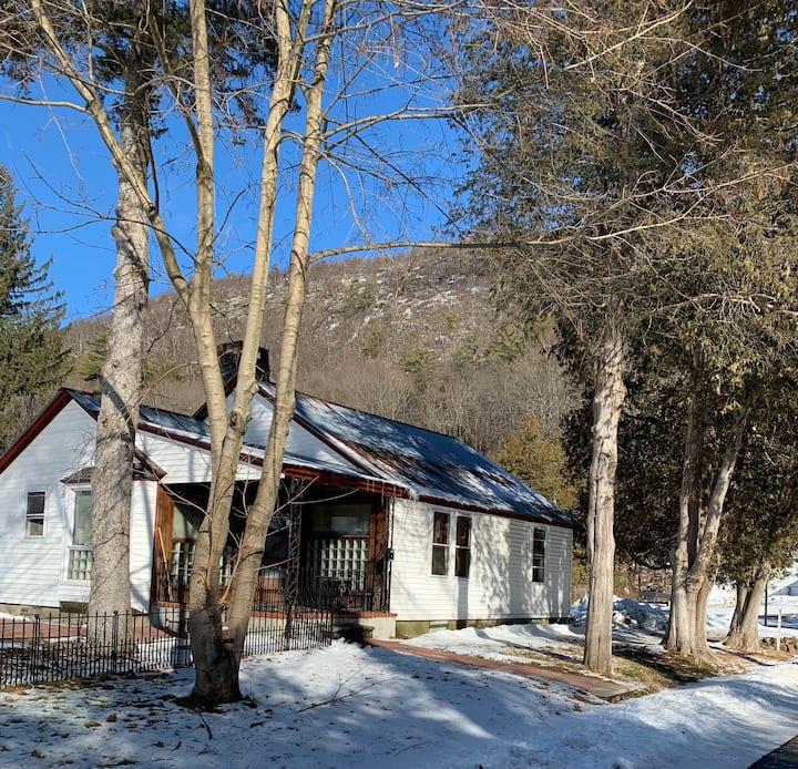 Adirondack Bungalow getaway