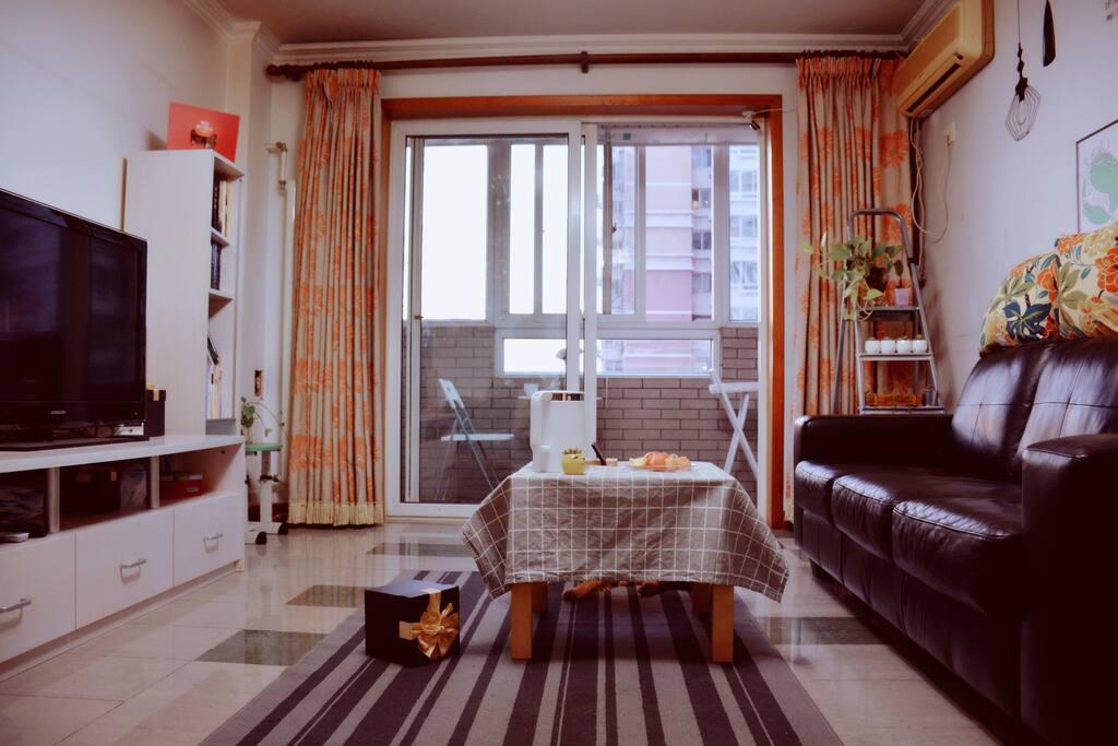 客厅和阳台一角 The living-room and balcony where you can have a rest.