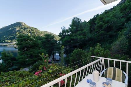 Guest House Marija- Studio w/ Balcony and Sea View - Sobra