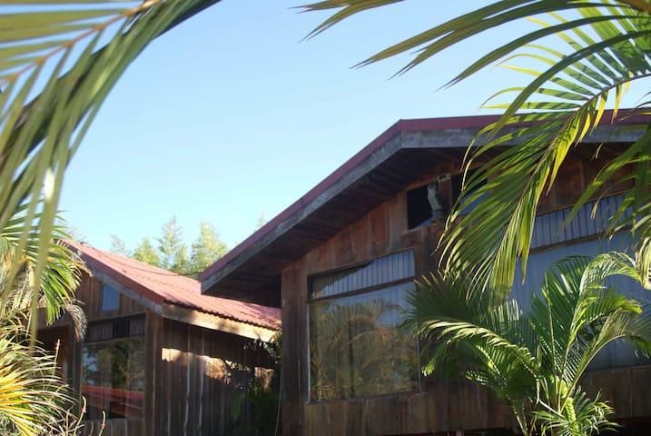 Cómodas cabañas en un entorno natural - San José Province - Blockhütte
