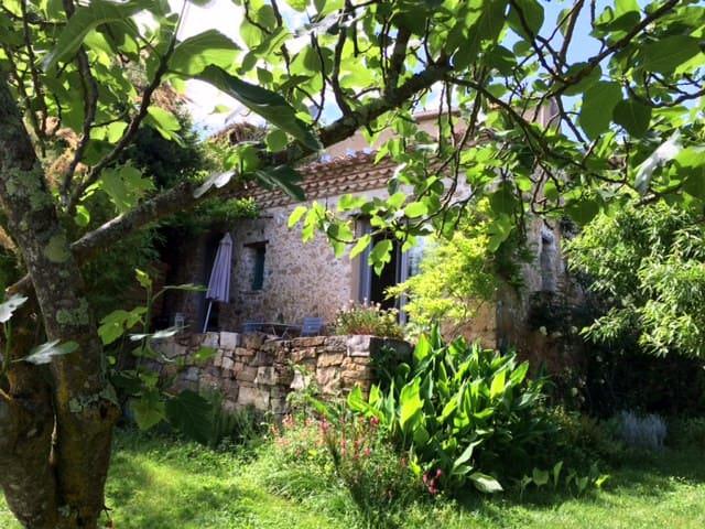 Domaine de Capiès, LE FIGUIER - Pomy