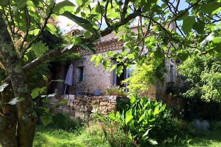Domaine de Capiès, LE FIGUIER - Pomy - Talo