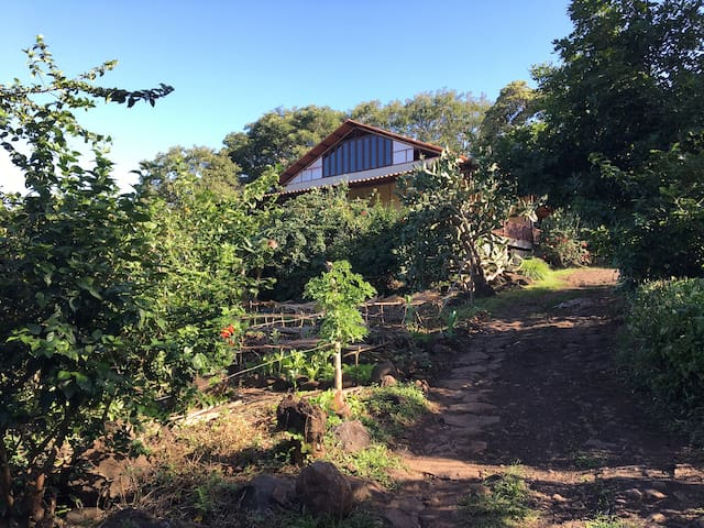 Casa del Bosque: whole house - Rivas, NI - Huis