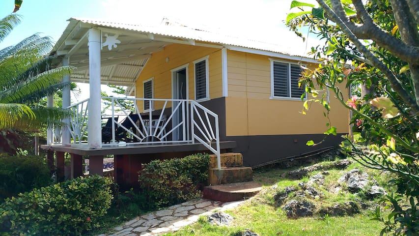 casa del jardin endemico