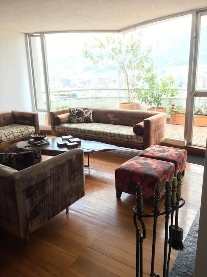Monica's view. Pent house terraza al Pichincha