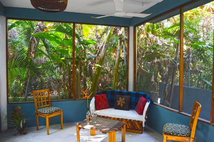 screened in patio facing the mangrove
