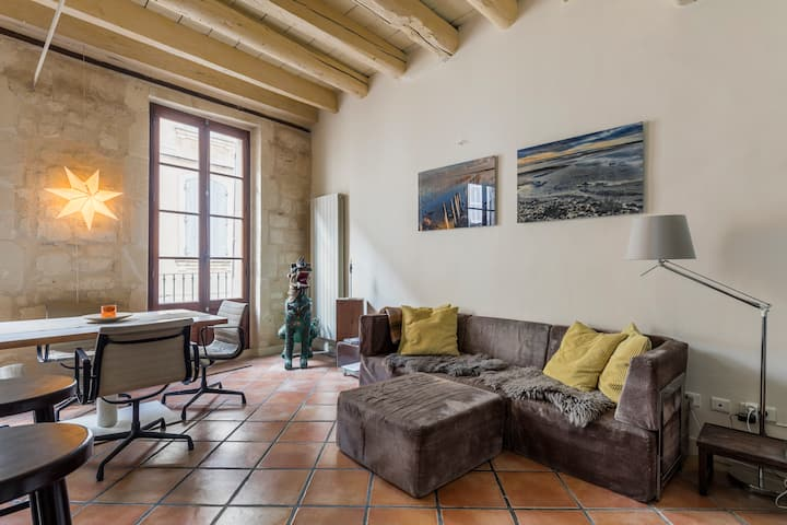 Spacious condo with roof terrace in historic Arles